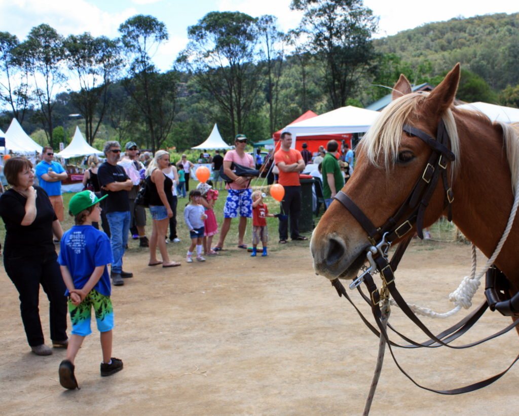 6-wollombi-valley-country-fair